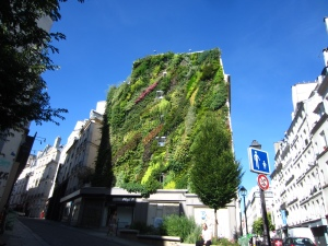 Patrick Blanc's vertical garden, the Oasis d'Aboukir, on the rue d'Aboukir, 75002 Paris