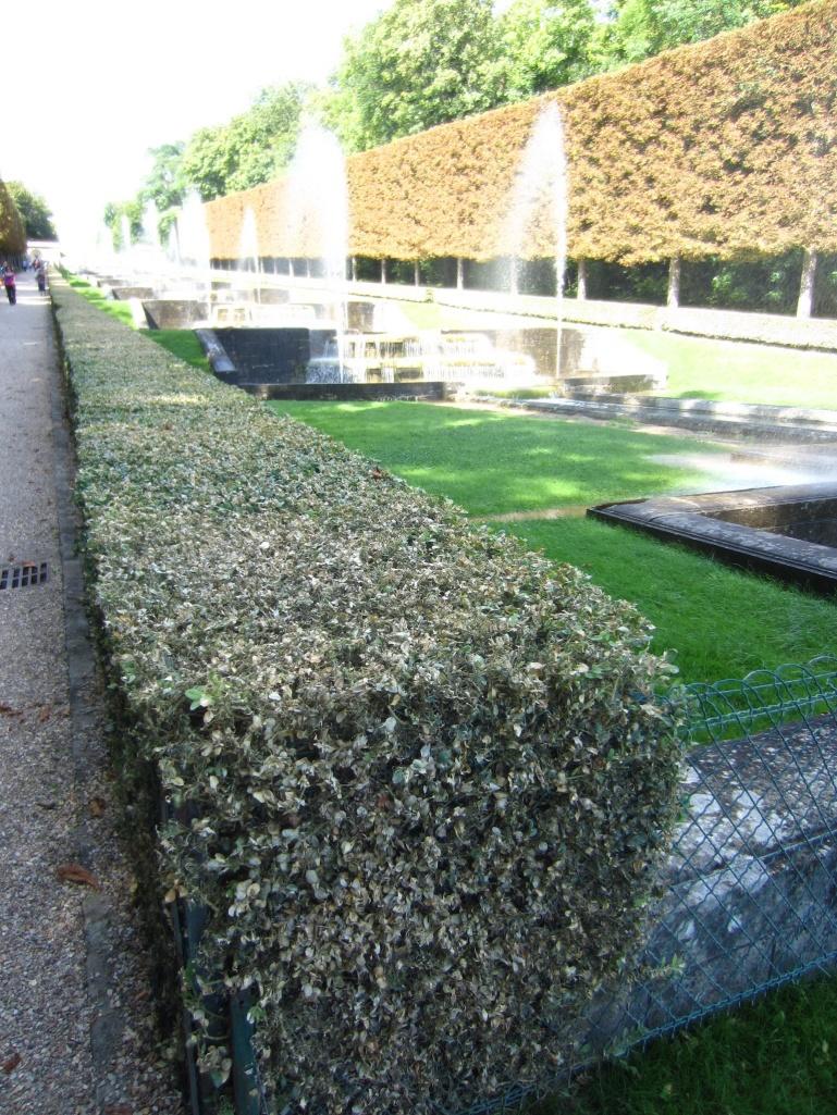 Parc de Sceaux: La grande cascade