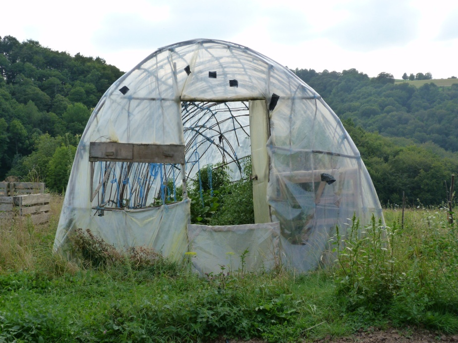 Home made polytunnel