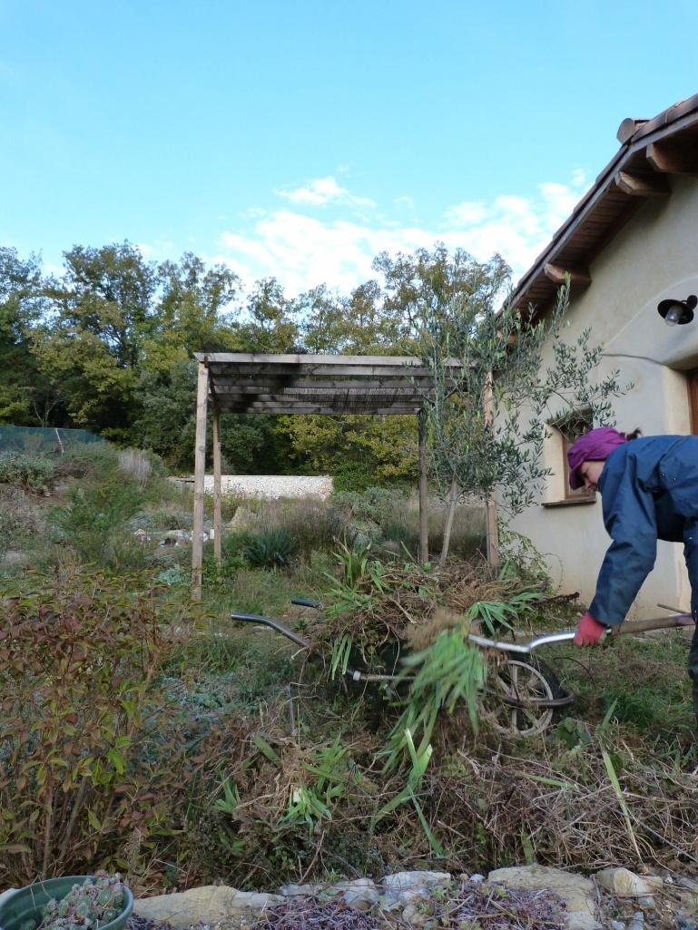 Kate weeding Katharine's