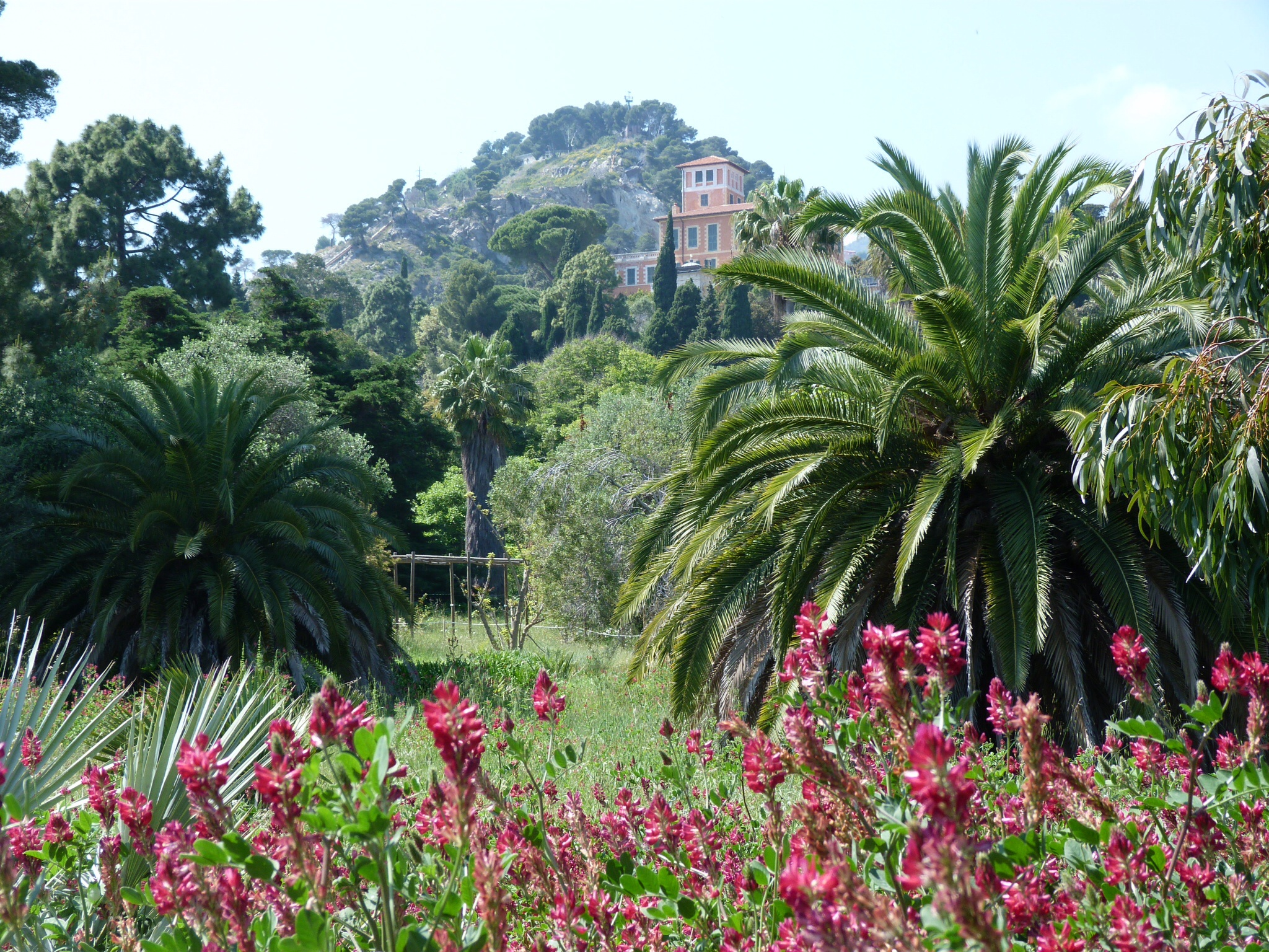 Gardens le jardin champ tre for Jardin hanbury