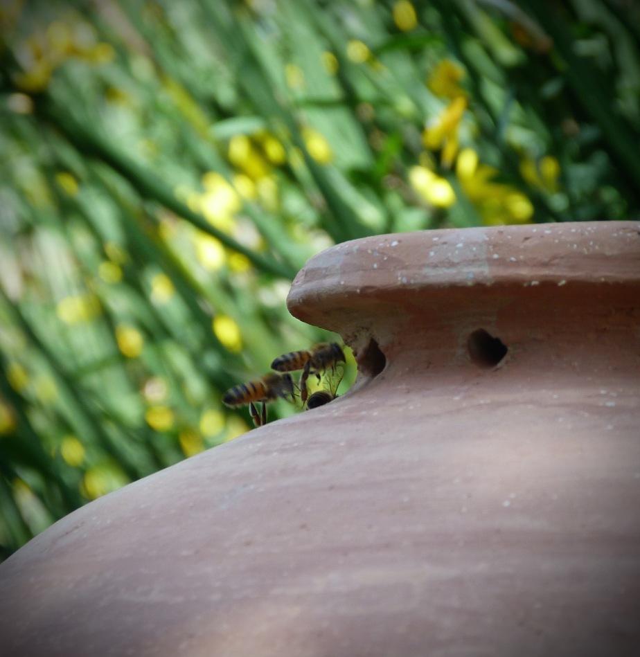 La nouvelle ruche ovoïde en terre cuite / New Egg-Shaped Terracotta Beehive, de Pierre Carpentier (Cite desAbeilles)