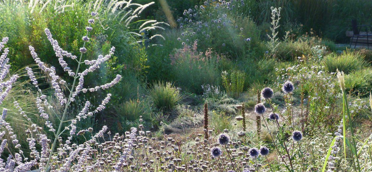 Le Jardin Champêtre – Nursery, Garden, Planting Design / Pépinière ...